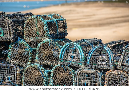 Stacked lobster pots close up Stock photo © jenbray