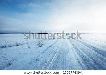 Snow landscape and road Stock photo © Juhku