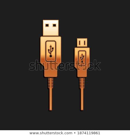 Pc ağ altın vektör ikon dizayn Stok fotoğraf © rizwanali3d