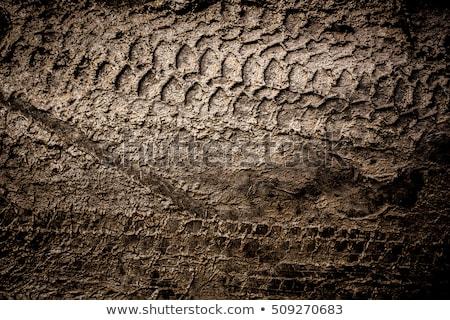 fangoso · camino · de · tierra · neumático · coche · camión · suciedad - foto stock © stoonn