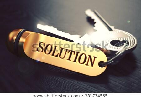 Decision Concept. Keys with Golden Keyring. Stock photo © tashatuvango