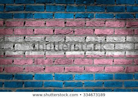 Oscuro pared de ladrillo orgullo textura bandera pintado Foto stock © michaklootwijk
