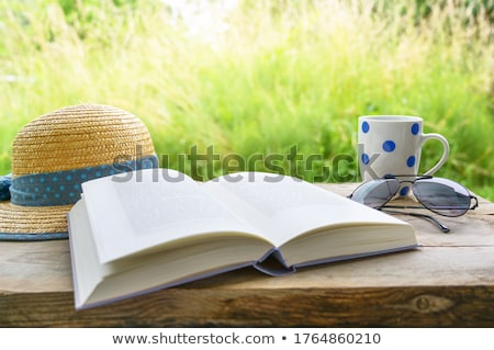 Könyv kalap illusztráció fehér háttér tanulás Stock fotó © get4net