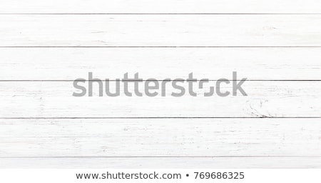 White texture - round striped surface. Stock photo © ExpressVectors