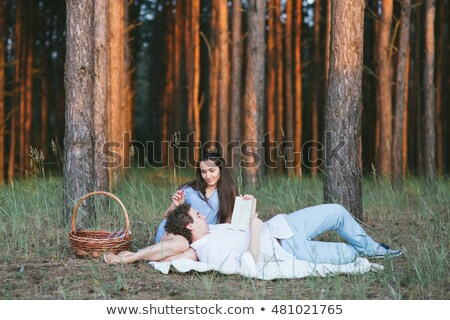 Couple Lying In Meadow Stock photo © IS2
