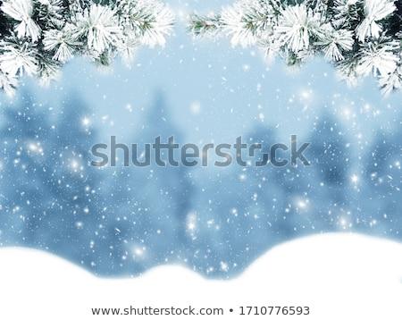 Karácsony keret terv fehér hó fagy Stock fotó © Kotenko