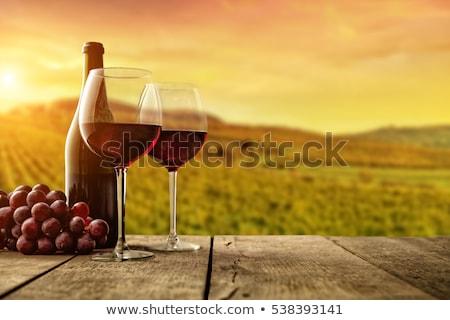 vin · vigne · décoratif · design · bouteille · verre - photo stock © bluering