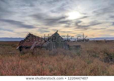 sunset over abandoned house at drawbridge the last remaining ghost town in san francisco bay area stock photo © yhelfman