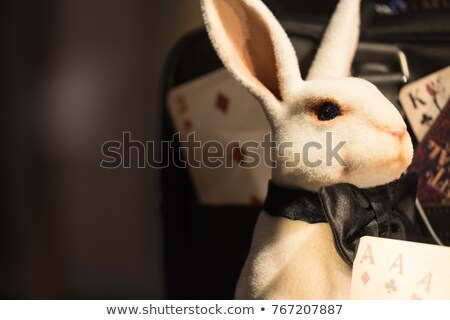 Sinistre peu lapin cartoon illustration regarder Photo stock © cthoman