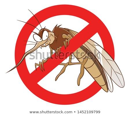 Stok fotoğraf: Cartoon Angry Mosquito