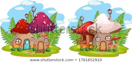 Champignon huis natuur illustratie bos ontwerp Stockfoto © colematt