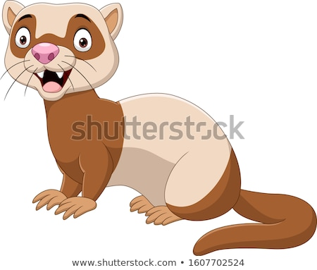 Cute cartoon furetto felice grafica Foto d'archivio © mumut