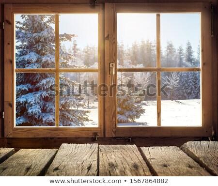 木材 雪 実例 ツリー 風景 庭園 ストックフォト © colematt