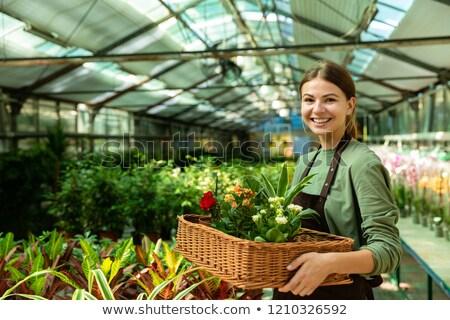 Kép derűs nő kertész 20-as évek visel Stock fotó © deandrobot