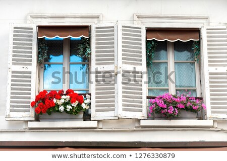 Windows with flowers on Montmartre street Stock photo © vapi