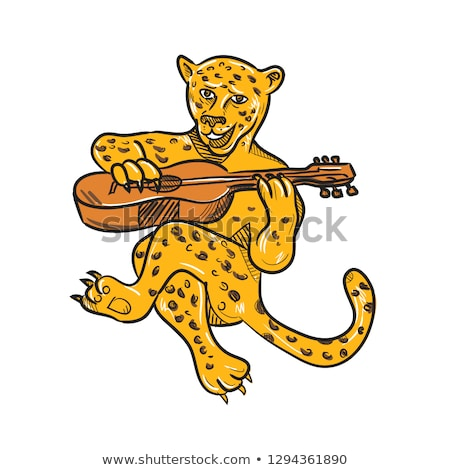 Mutlu leopar oynama akustik gitar karikatür stil Stok fotoğraf © patrimonio