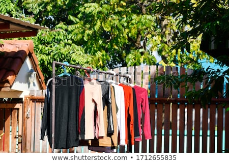 Multicolor shirts on clothesline in sunny day Stock photo © galitskaya
