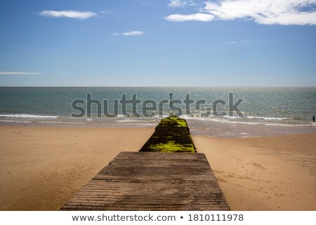 breakwater at low tide stock photo © jsnover