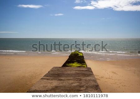 Photo stock: Faible · marée · algues · plage