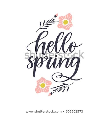Olá primavera texto vetor cartaz Foto stock © masay256