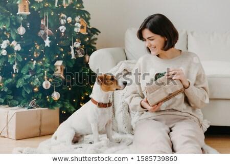 Vrolijk brunette vrouw presenteert favoriet hond Stockfoto © vkstudio