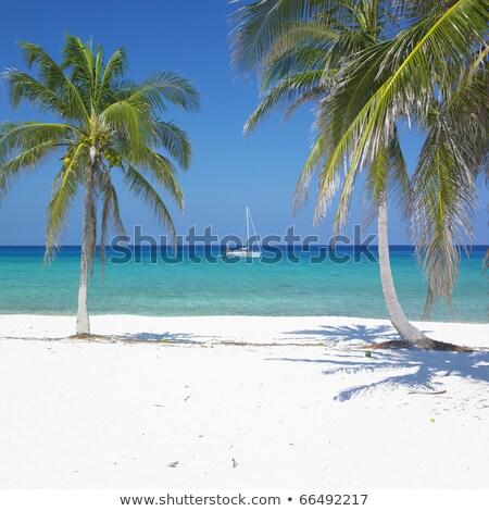пляж · Рио · Куба · морем · рай - Сток-фото © phbcz