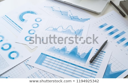 Financial reports Stock photo © Grazvydas