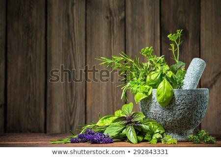 Frescos hierbas mesa de madera hoja planta blanco Foto stock © Kesu