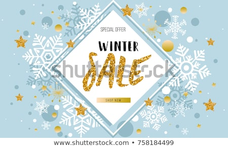 winter sale with snowflake on blue drawn banners Stock photo © marinini