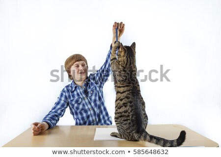 Foto stock: Smart Boy Learning For School Has A Break And Plays With His Cat