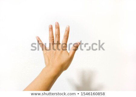 woman guard stop hand gesture stock photo © nicoletaionescu