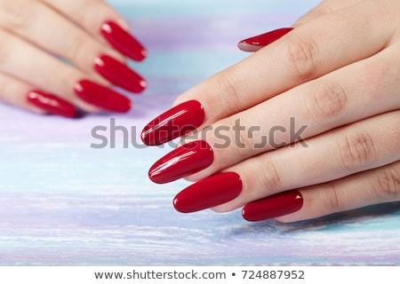 Női kéz hosszú körmök fehér copy space Stock fotó © Nobilior
