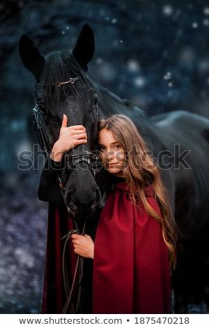 Portrait fabuleux brunette jeunes dame jeune femme Photo stock © konradbak