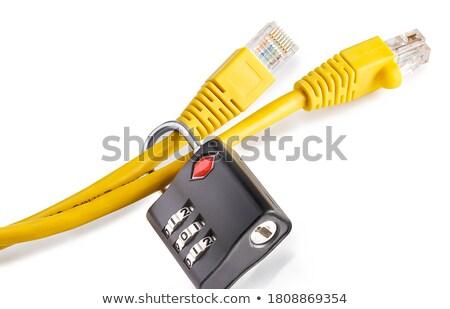 Kábel zárolt csere diagram üzlet pénz Stock fotó © fuzzbones0