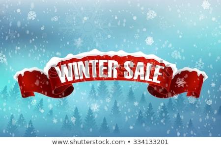 зима предлагать красный вектора икона дизайна Сток-фото © rizwanali3d