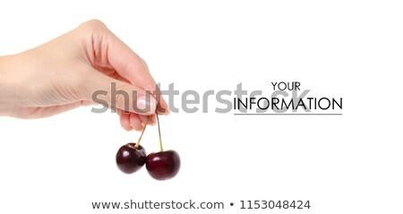 Femenino manos frescos agrio cerezas Foto stock © MarySan