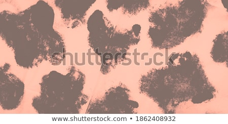 Hippo with gray skin Stock photo © bluering