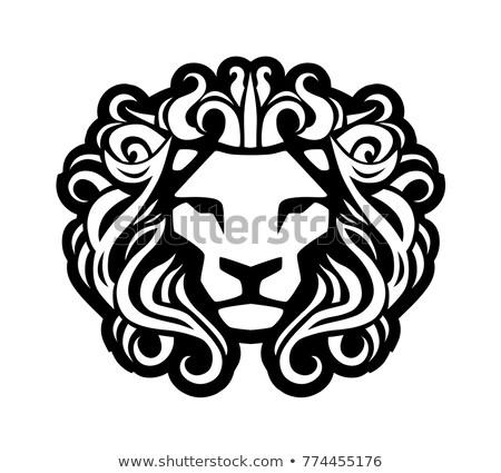 Decoratief vintage leeuw tshirt geïsoleerd Stockfoto © NikoDzhi