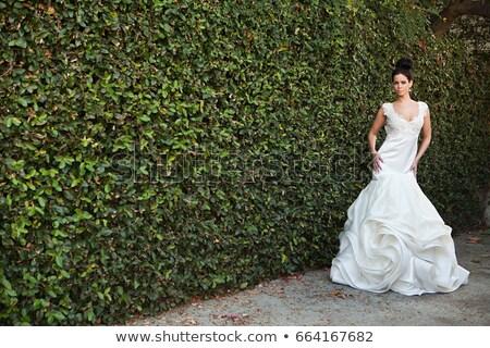 подвенечное платье Постоянный моде невеста Сток-фото © IS2