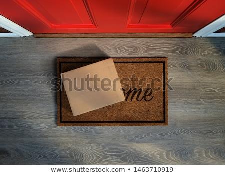Kívül bejárati ajtó fő- ajtó otthon szőnyeg Stock fotó © magraphics