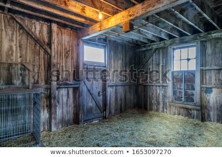 古い 馬 納屋 ランチ 公園 サンタクロース ストックフォト © yhelfman