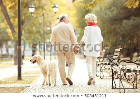 people playing with leaves couple walking dog stock photo © robuart