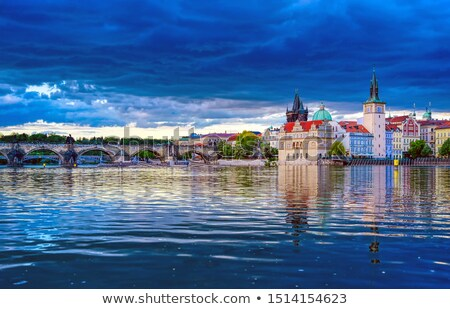 Birds on river Vltava Stock photo © Givaga