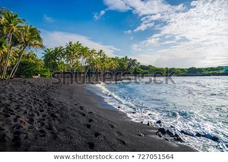 Vulkanisch zwarte strand maagd bali Indonesië Stockfoto © boggy