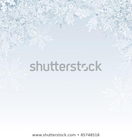Winter sneeuwvlokken vector Blauw grijs bevroren Stockfoto © frimufilms