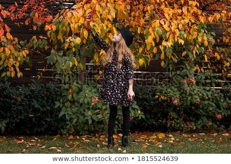 Photo stock: Heureux · blond · fille · posant · automne · parc
