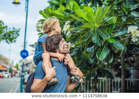 Dad and son sniffing group of yellow white flowers Frangipani, Plumeria on a sunny day with natural  Stock photo © galitskaya