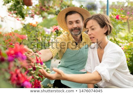 Mature gardener showing young woman new sorts of flowers Stock photo © pressmaster