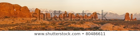 tower of rocks in grand canyon and colorado river stock photo © dolgachov