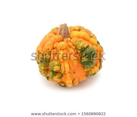 Deep orange gourd with green patches and warty skin Stock photo © sarahdoow